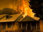 General information about Australia's devastating fires