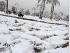 هام | جبل اللوز على موعد مع تساقط ثلجي قد يكون الأقوى لهذا الموسم
