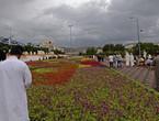 السعودية | بعد الأجواء اللطيفة .. الحرارة ترتفع من جديد شمالاً والأمطار تتجدد على جازان وعسير نهار الثلاثاء