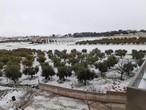 بالصور: الثلوج تزور مناطق مختلفة من المملكة اليوم الثلاثاء.. وتراكمات في جنوب المملكة