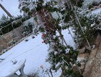 Video and photos See the snow covering large areas of Iraq next to the capital, `Baghdad`