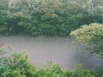 طقس العالم | أمطار متوقعة على أجزاء من غرب القارة الأوروبية وجبهة هوائية باردة ماطرة تؤثر على الولايات المتحدة الأمريكية