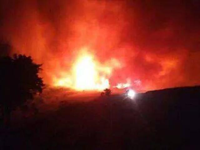 بالصور .. حرائق غابات ضخمة تشتعل بالجزائر بالتزامن مع موجة الحر الشديدة