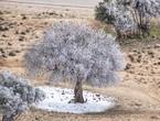 ارتفاع فرص هطول الأمطار على جدة منتصف الاسبوع و استمرار الطقس البارد في عموم المملكة