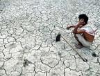 ظاهرة النينيو تزيد مخاوف الأمن الغذائي في آسيا