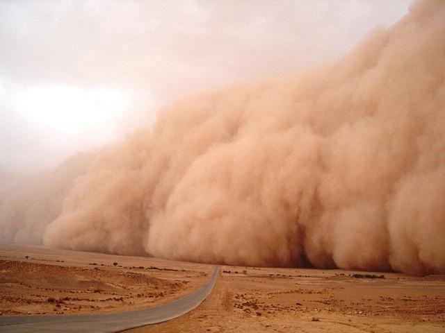من الثلاثاء للجمعة .. عدة موجات غبارية تعصف بالجزيرة العربية