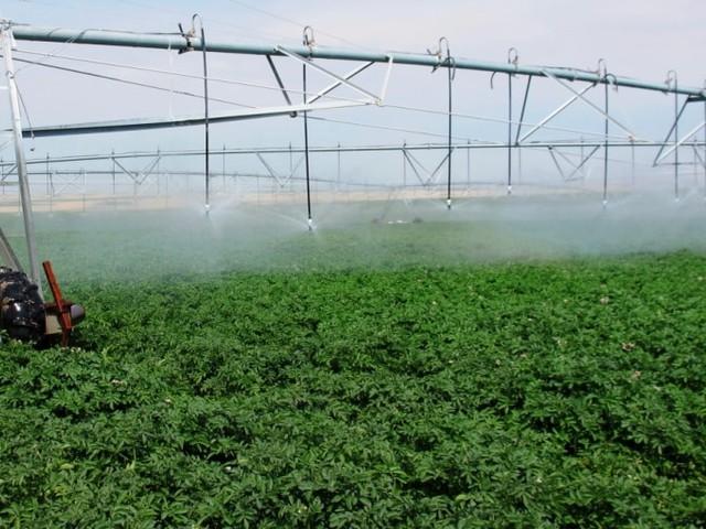 معلومات عن استخدامات المياه في الصناعة والزراعة والمنازل