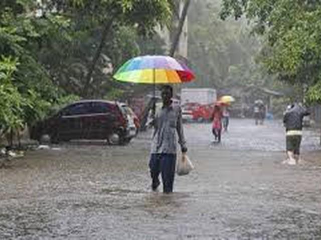 الهند... الأمطار الموسمية تغطي نصف مساحة البلاد