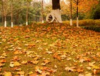 أيلول .. بين رحيل الصيف وبداية الخريف