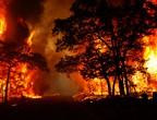 الطقس يعرقل إطفاء الحرائق في ألمانيا