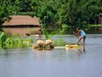 تزايد الفيضانات في شمال شرق الهند وحيوان وحيد القرن في خطر