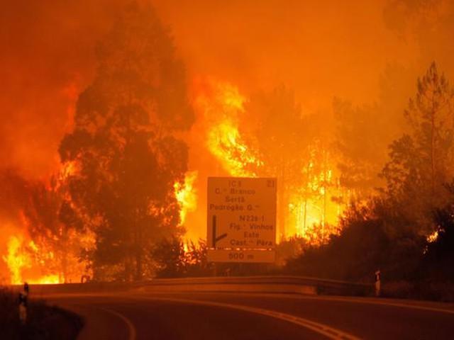 بالصور.. وفاة 65 شخصًا في البرتغال بسبب الحرائق