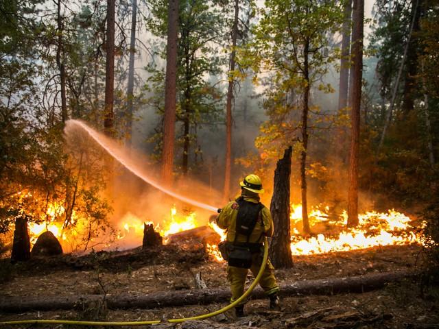 بالصور.. حريق يؤدي إلى إجلاء نحو 83 ألف شخص في كاليفورنيا