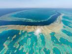"""""""النينيو"""" تهدد الحاجز المرجاني العظيم في أستراليا بالخطر"""