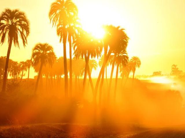 كُتلة هوائية حارة نسبياً إلى حارّة تؤثر على المملكة هذا الأسبوع