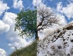 الطقس الحار أخطر بخمس مرات على صحة الإنسان من البرد