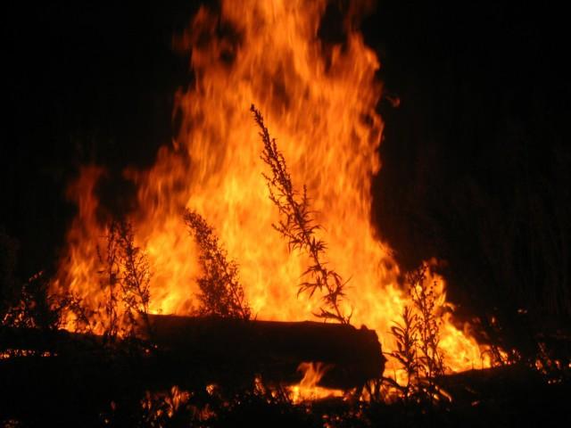 حريق غابات يلتهم 4 قرى بجنوب السودان ويودي بحياة 33 شخصا