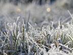 كتلة هوائية شديدة البرودة تتحرك نحو المملكة خلال الساعات القادمة