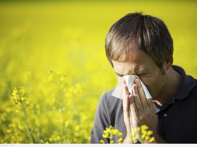 حساسية الغبار.. الأسباب والوقاية